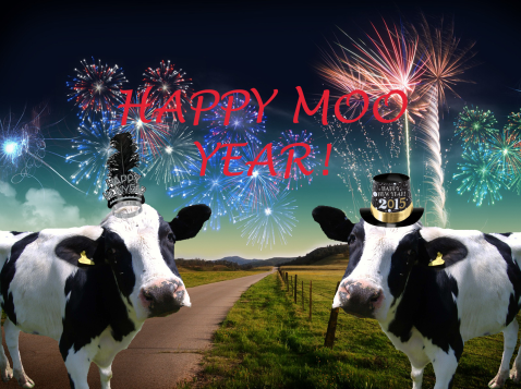 Happy Moo Year!