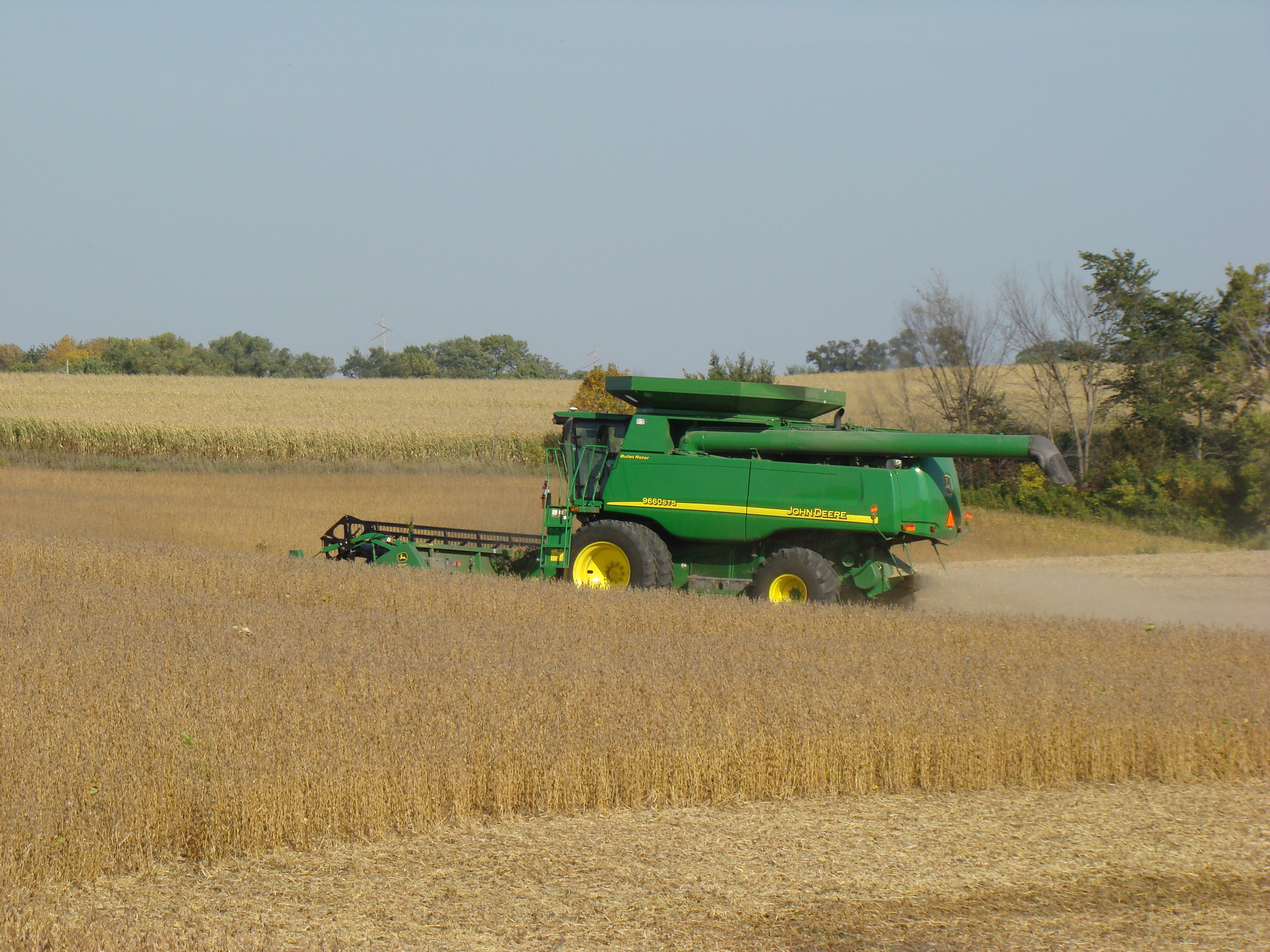 A combine picking beans in a Blue Earth County field.