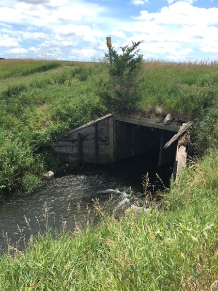 Old Wood Box Culvert